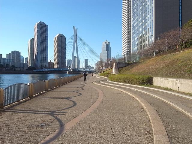 隅田川テラス・橋めぐり